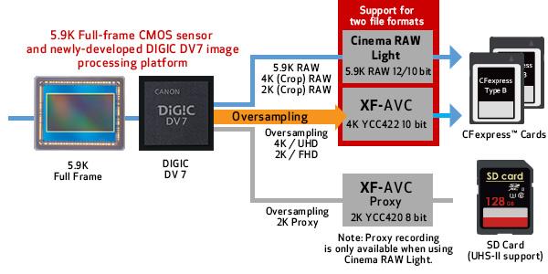 5.9K Full-Frame CMOS Sensor & DiG!C DV7 Proccesing