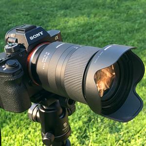 Tamron 28-75mm f/2.8 Di III RXD Lens for Sony E A036 B&H Photo