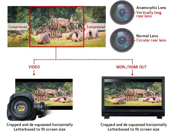 Anamorphic Lens Compatibility