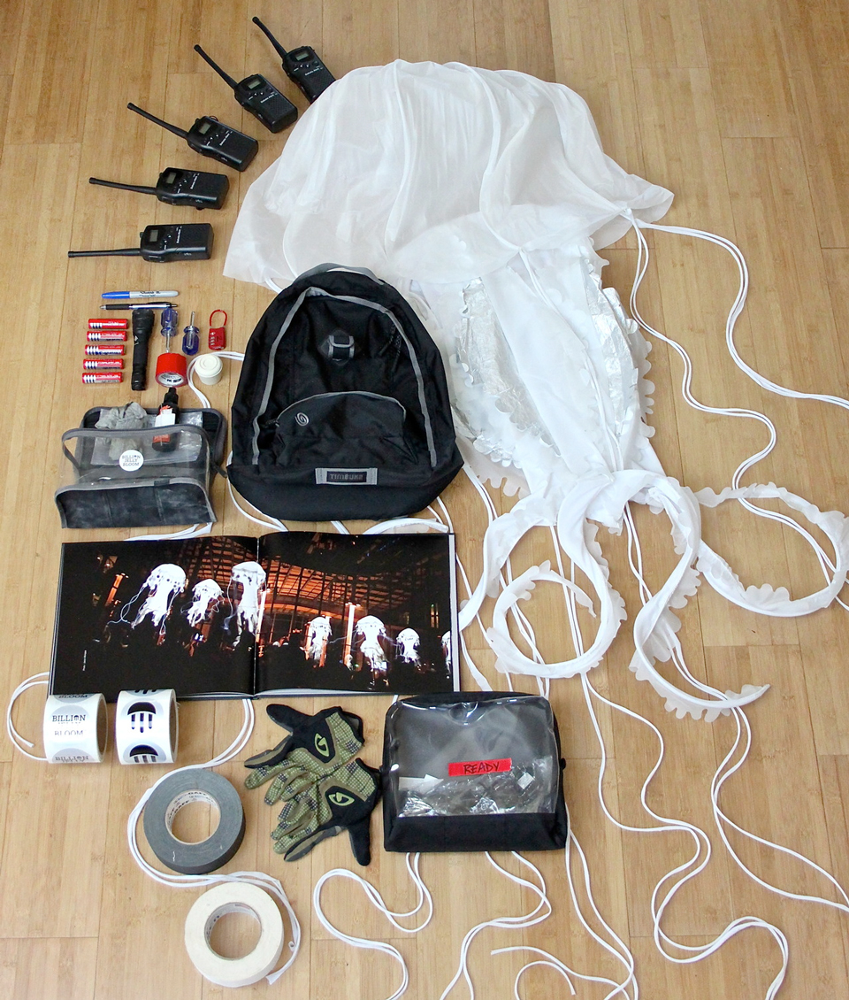 Photo By Patti L What Cant You Live Without Everything In My Event Bag Is Essential To Managing A 10 25 Jellyfish Flash Bloom Festival Appearance