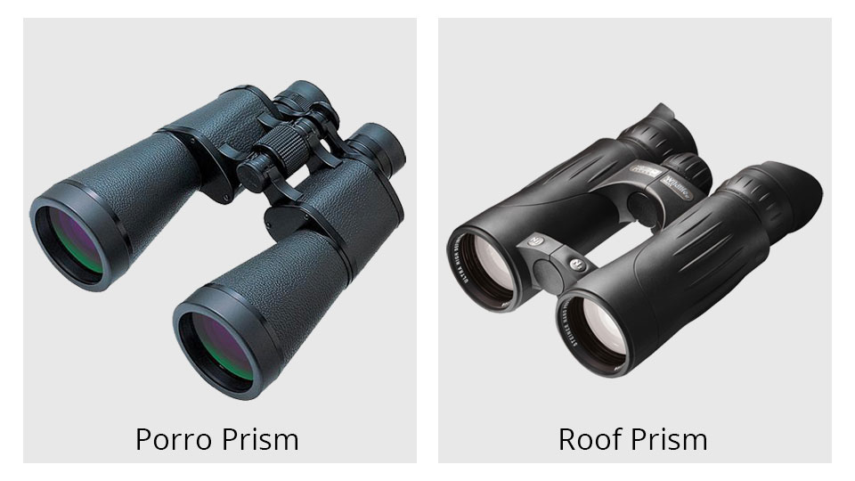 A Guide To Birding With Binoculars B Amp H Explora