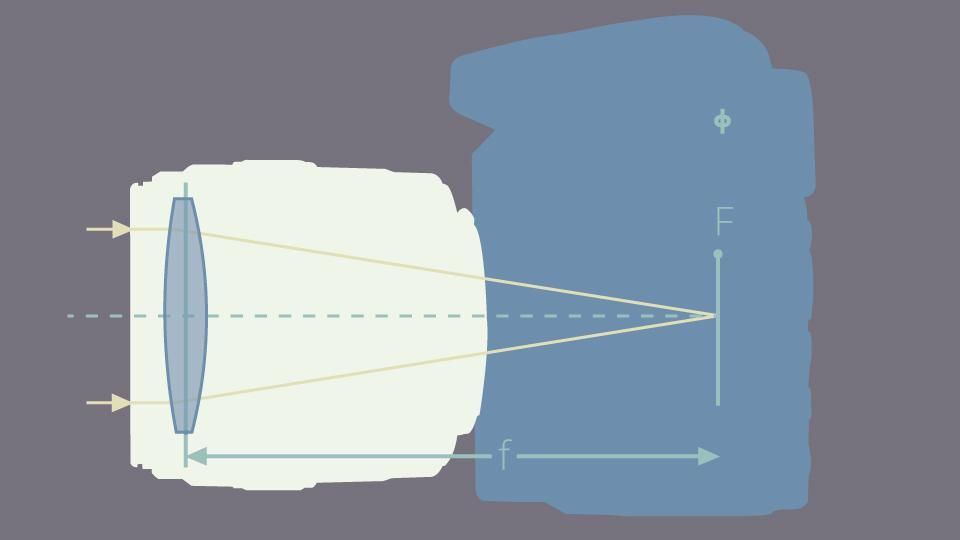 Understanding Crop Factor   B&H Explora