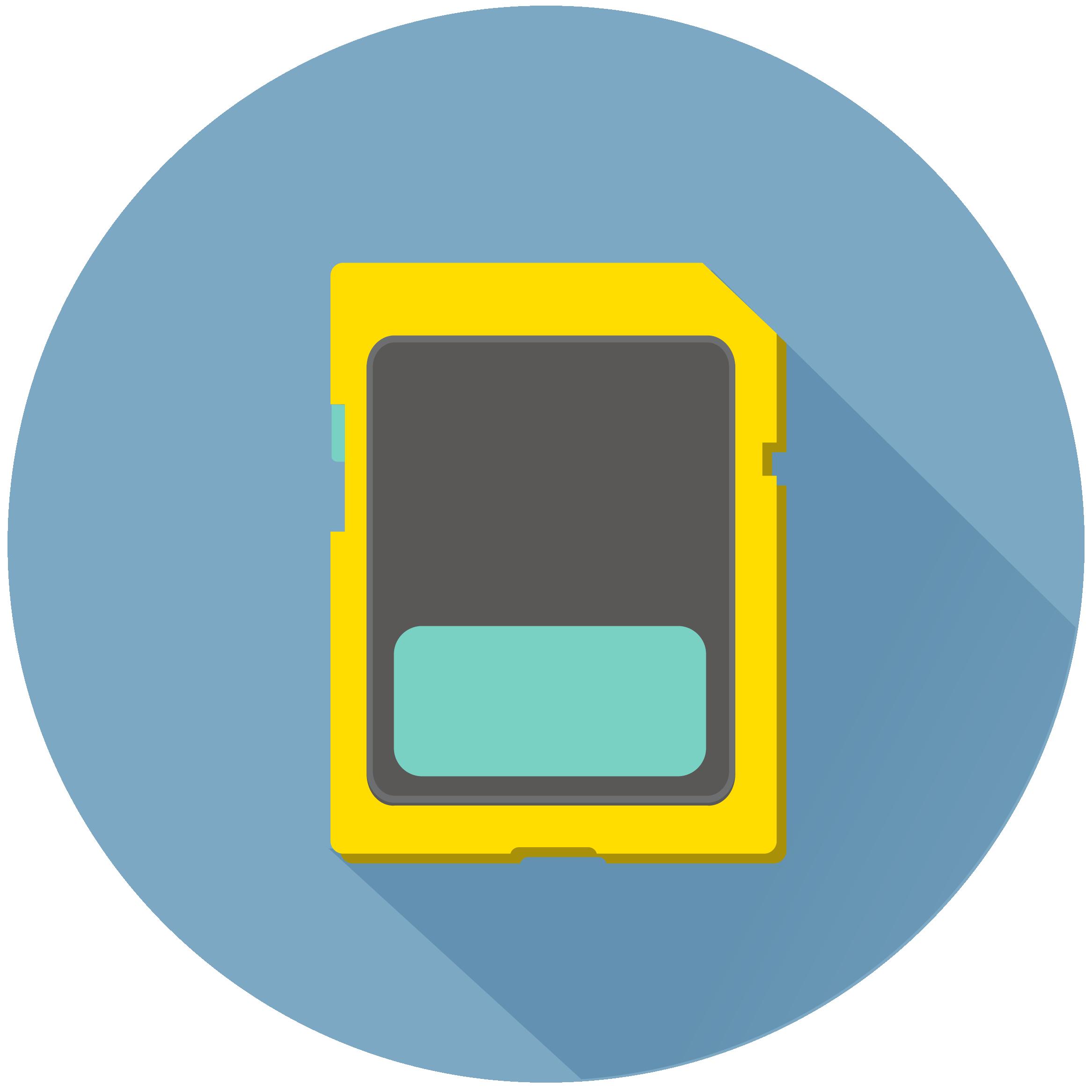 Secure Digital (SD)