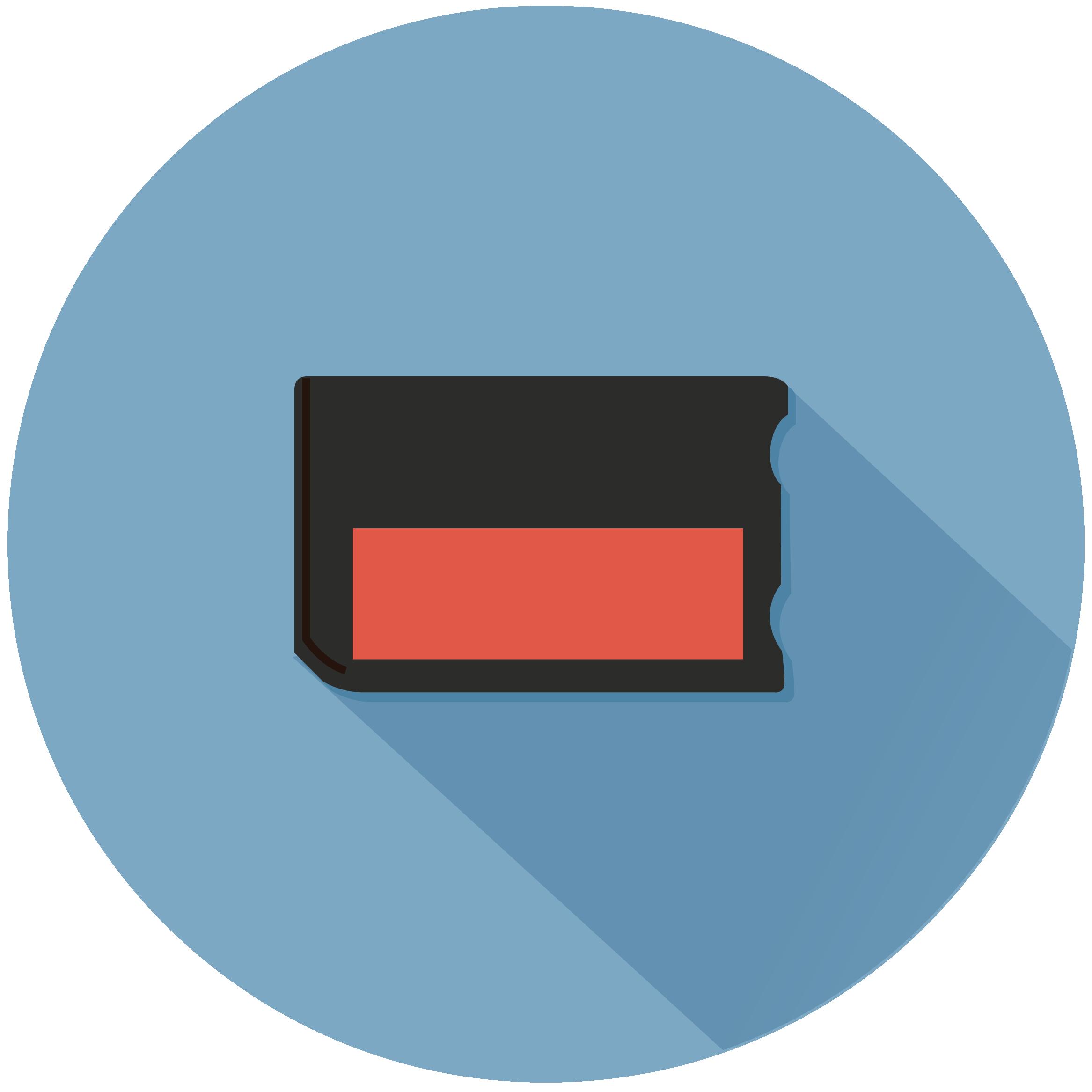 Memory Stick (MS)