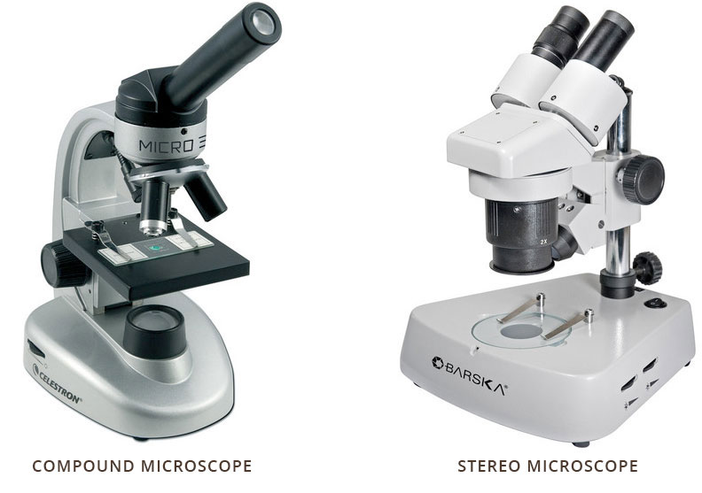 The Bh Microscope Buying Guide Bh Explora