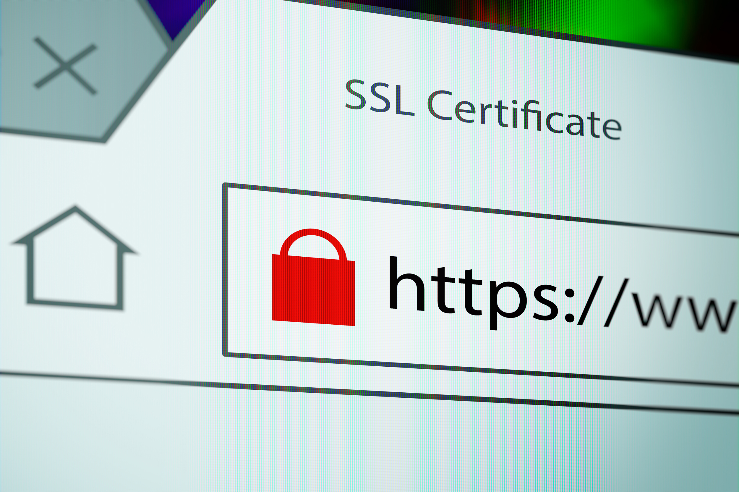General Tips for Online Security and Privacy | B&H Explora