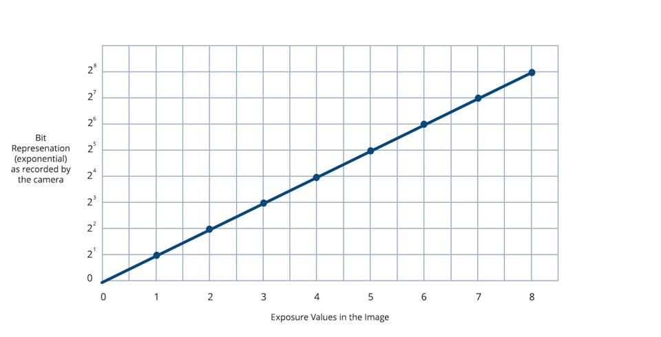 Understanding Log-Format Recording   B&H Explora