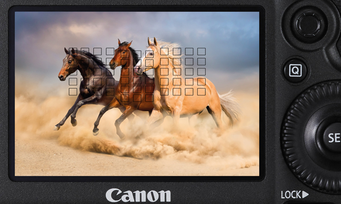 Canon Camera Wars: 5D Mark IV versus 5DS and 5DS R | B&H Explora