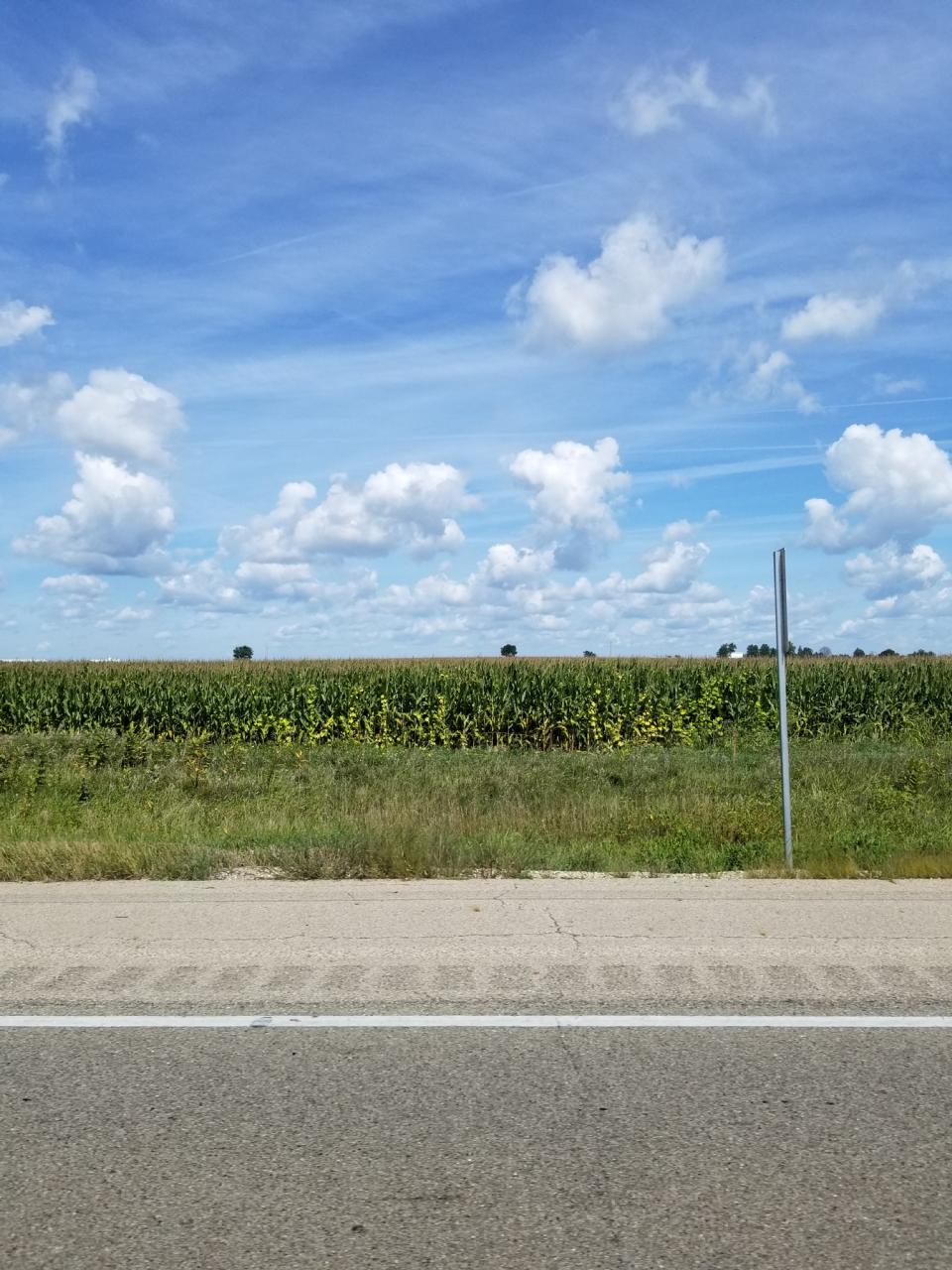 Miles of corn and a big sky in Iowa.
