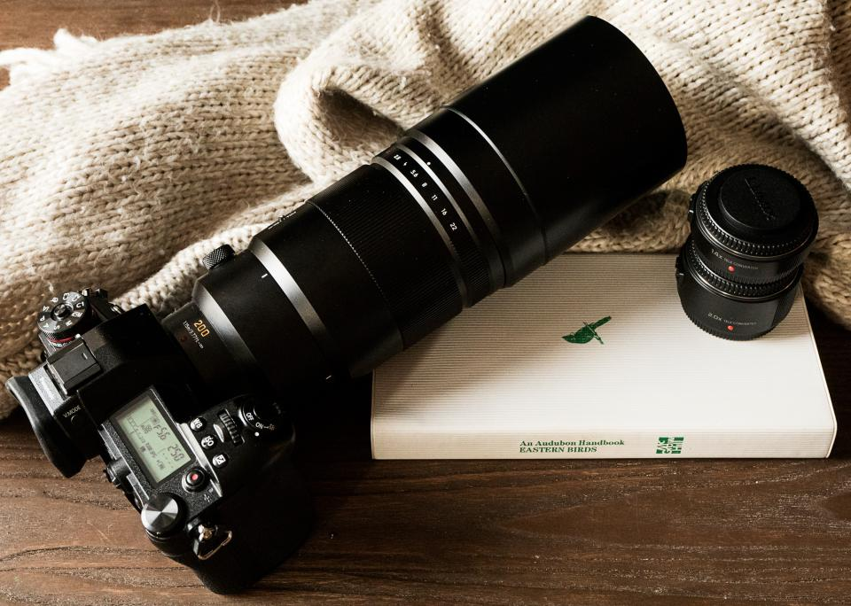 Birding in Brooklyn with the Panasonic G9 and Leica 200mm f