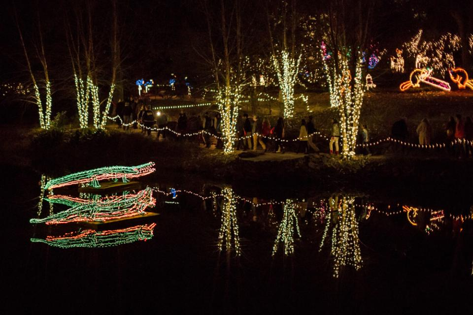 Holiday Light Shows in Eight States: AL, AR, AZ, CA, CO, DE, FL, and ...