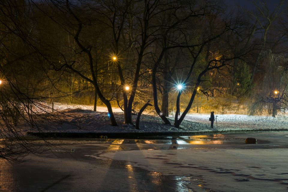 10 Essential Tips for Night Photography | B&H Explora