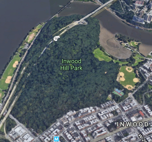 Inwood Hill Park contains the last natural forest in Manhattan.