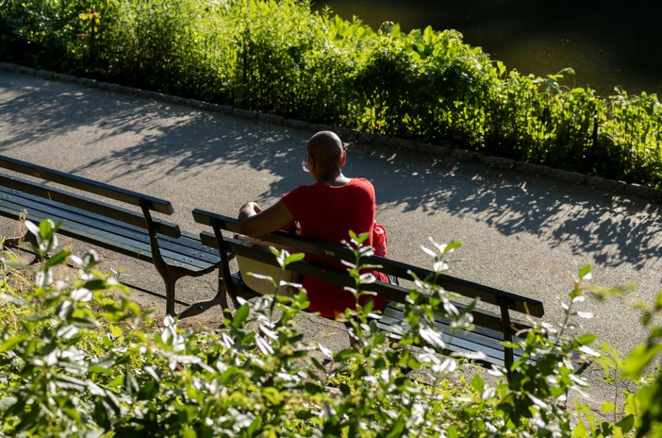 Woman Reading by The Pond in Central Park (II)