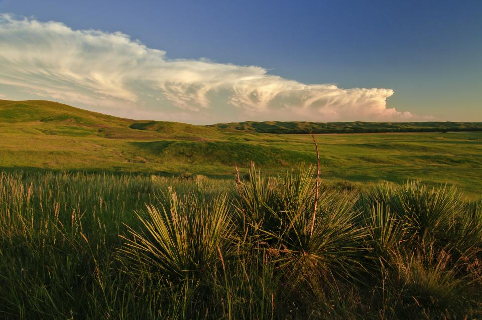 south dakota  from the black hills national forest to the